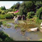 """""""Chinesischer Garten """""""