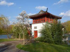 Chinesischer Garten in Berlin 004