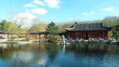Chinesischer Garten in Berlin 3