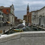 Chioggia -Kleinvenedig genannt