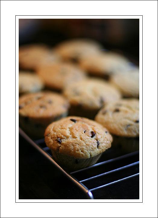 choco chips muffins