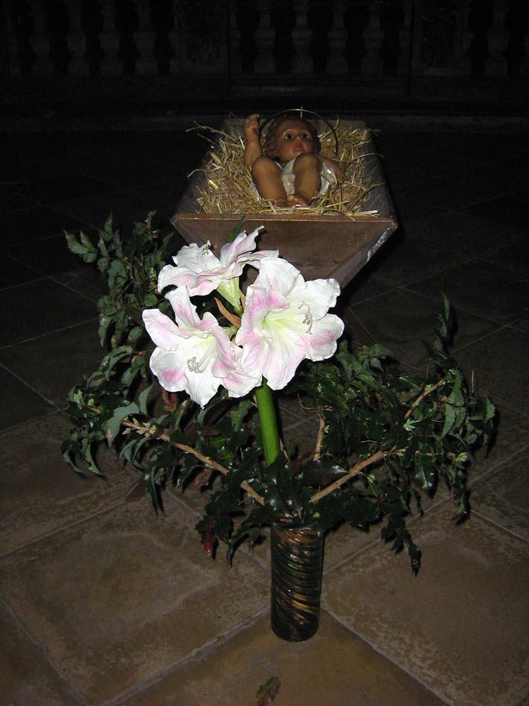 Christkind in der Asamkirche Rohr