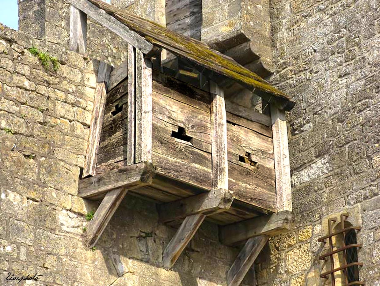 que suis je? où suis je?Martin 8 octobre trouvé par Ajonc et Martine Chteau-de-beynac-les-latrines-11a97782-63cb-44ec-a549-cdfcd43c64c0