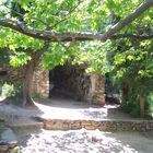 Church in Kaisariani Forest -Athens