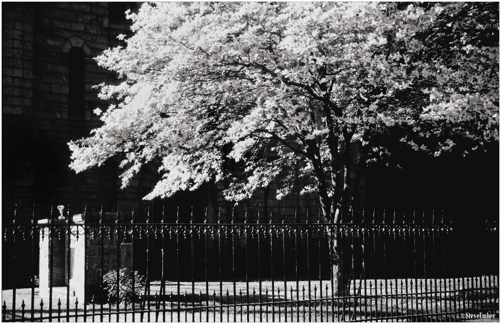 Churchyard in Spring