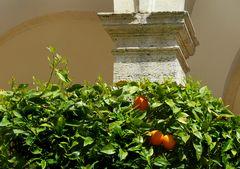 Ciao Villa d'Este