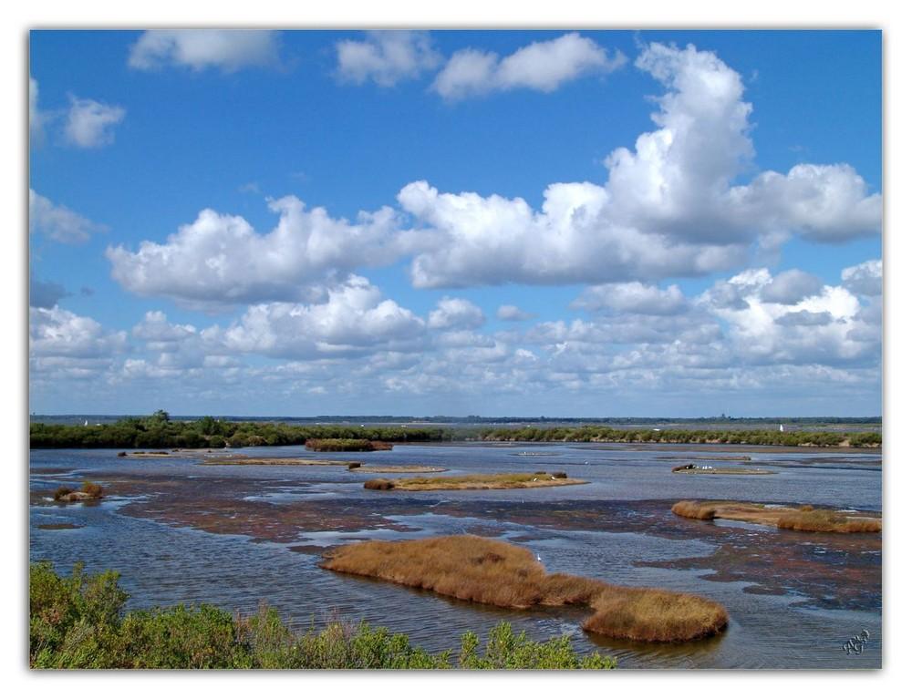 Ciel chargé sur le parc ornithologique du teich
