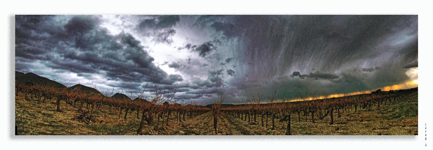 Ciel chargé sur les vignes