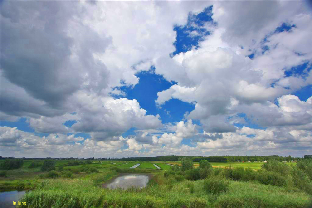 ciel hollandais,3.