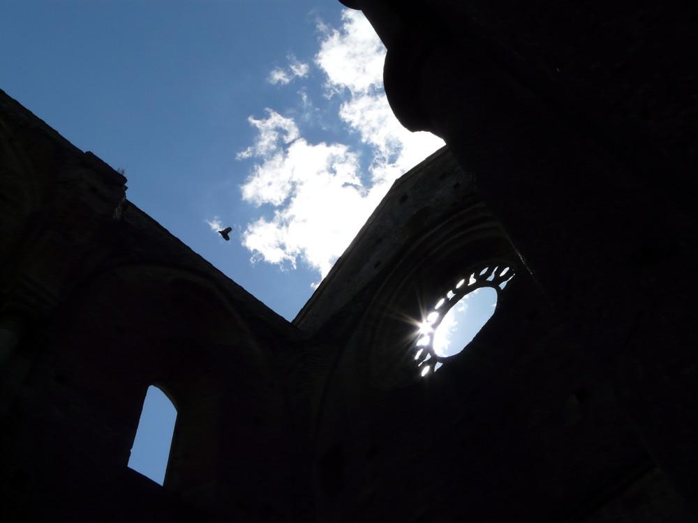 Cielo a San Galgano