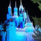 Cinderella's Castle at Night - Disney World Florida