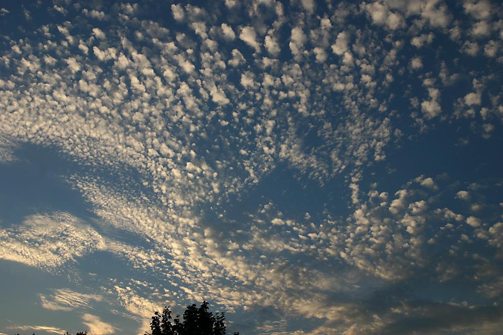 Cirrocumulus - hohe Schäfchenwolken