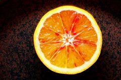 Citrus sinensis (L.) - Halbblutorange