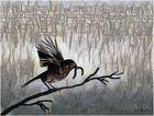 City bird