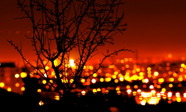 City lights .