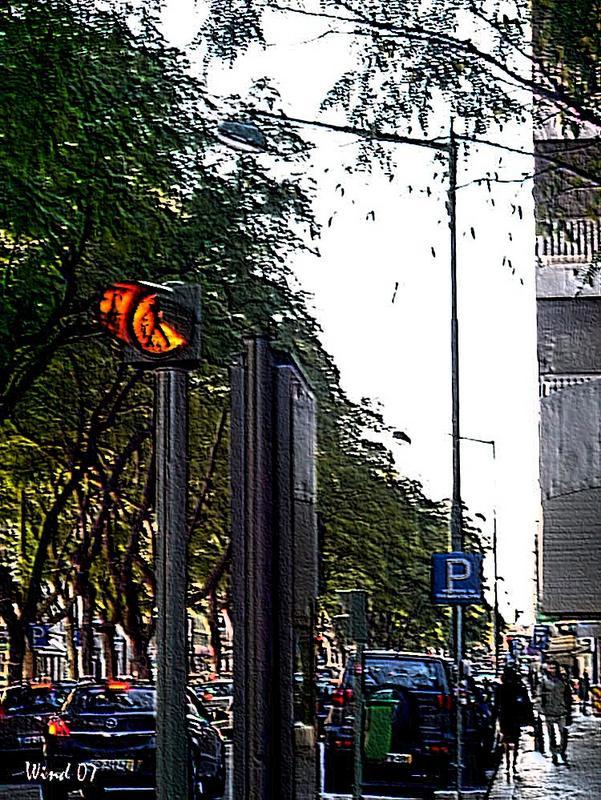 City's movimment