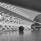 Ciudad de las Artes y las Ciencias-3