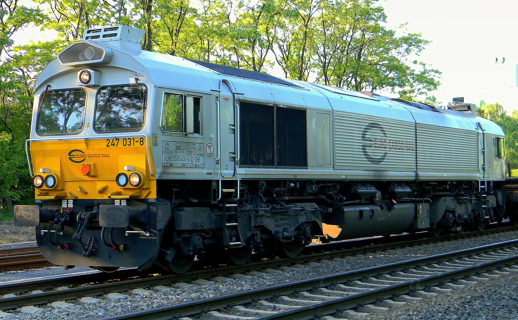 Class 66 ( Euro Cargo Rail )