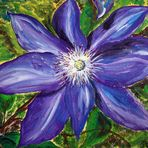 Clematis-Blüte