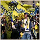 Clermont rugby fans 33 in newcastle