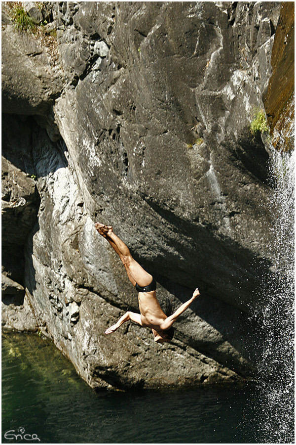 cliffdiving world championship 2006 whdf