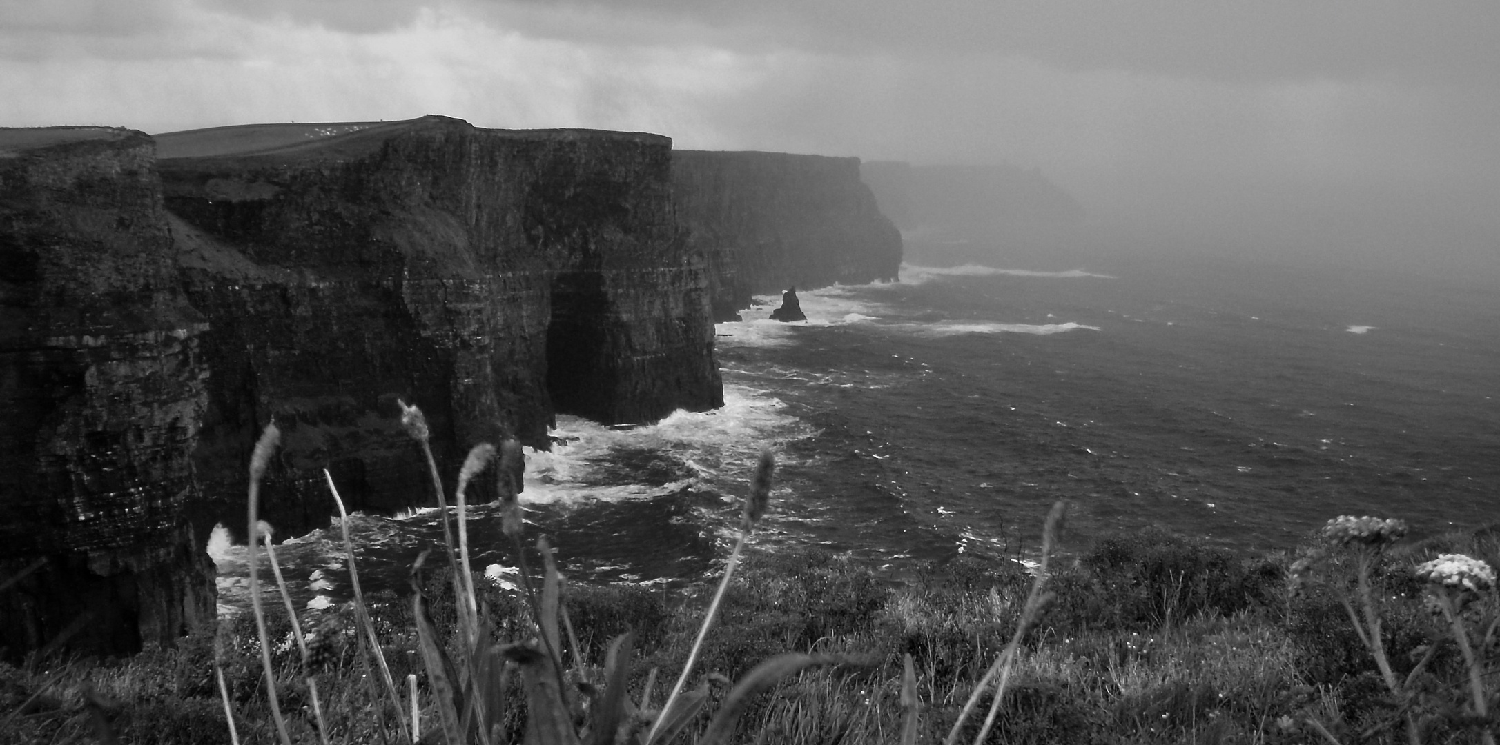 Cliffs of Moher: The Fog...is coming