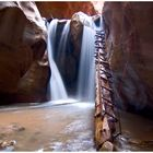 Climbing a waterfall
