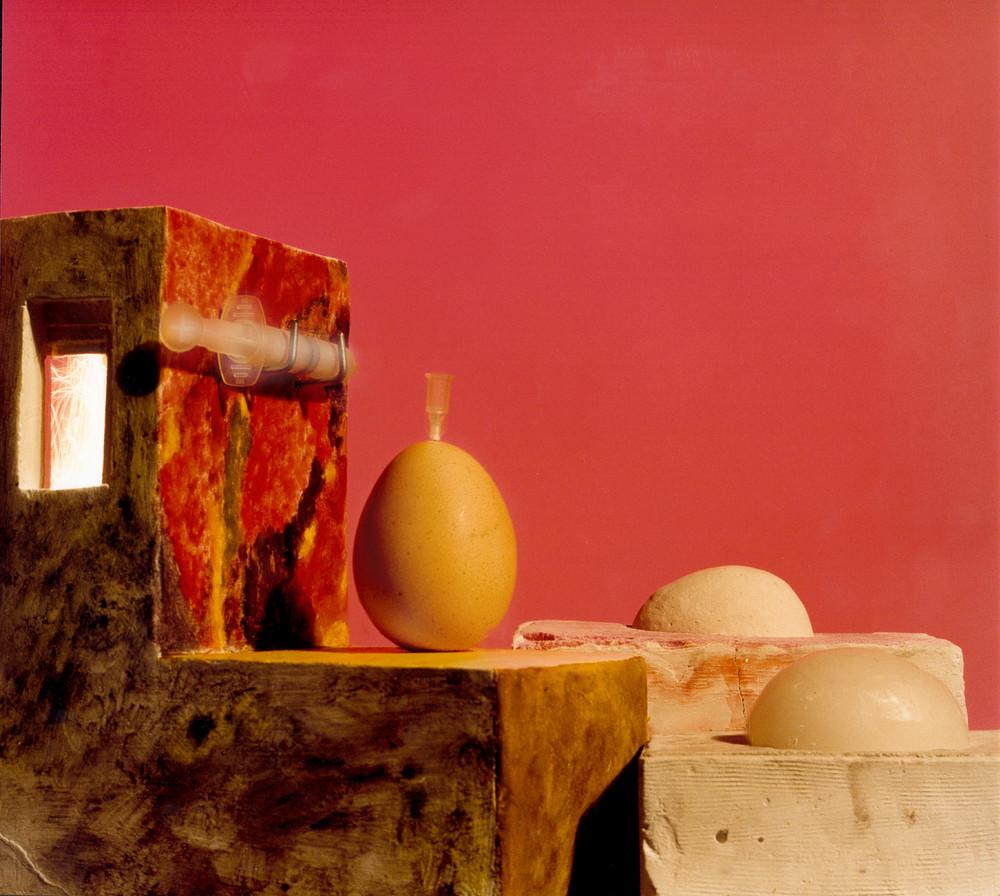 Clonazione dell'uovo sodo