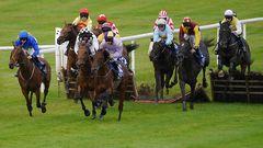 Clonmel Racecourse (Powerstown Park) / Ireland