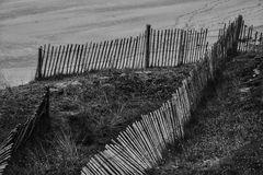 Clôtures et les dunes (2)