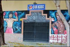Club de Boxeo Postigo... 5