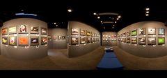 Club Exhibition