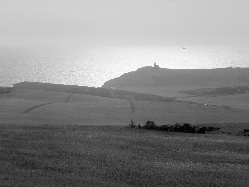 coastal fields