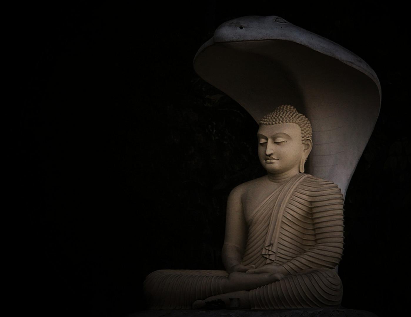 Cobra schützt Buddha