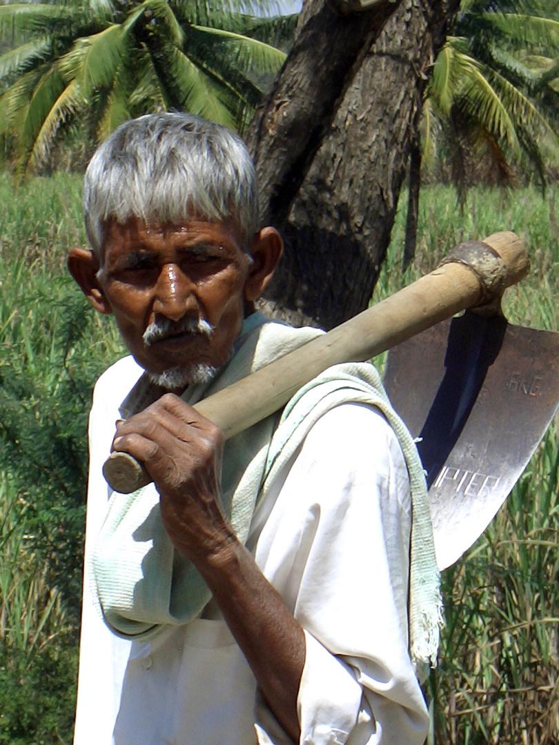 Cochin 2007