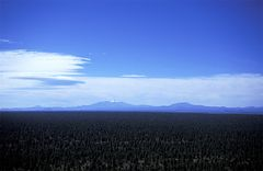 Coconino Plateau mit San Francisco Mountains