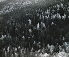 Col des Bagenelles