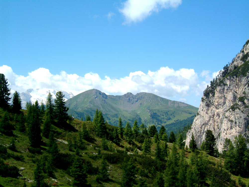Col di Lana - Kriegsschauplatz Dolomiten 1915 -18