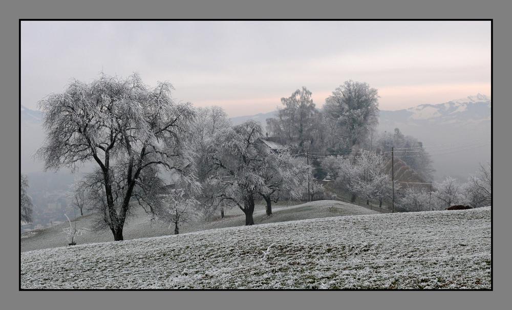 cold in switzerland 1