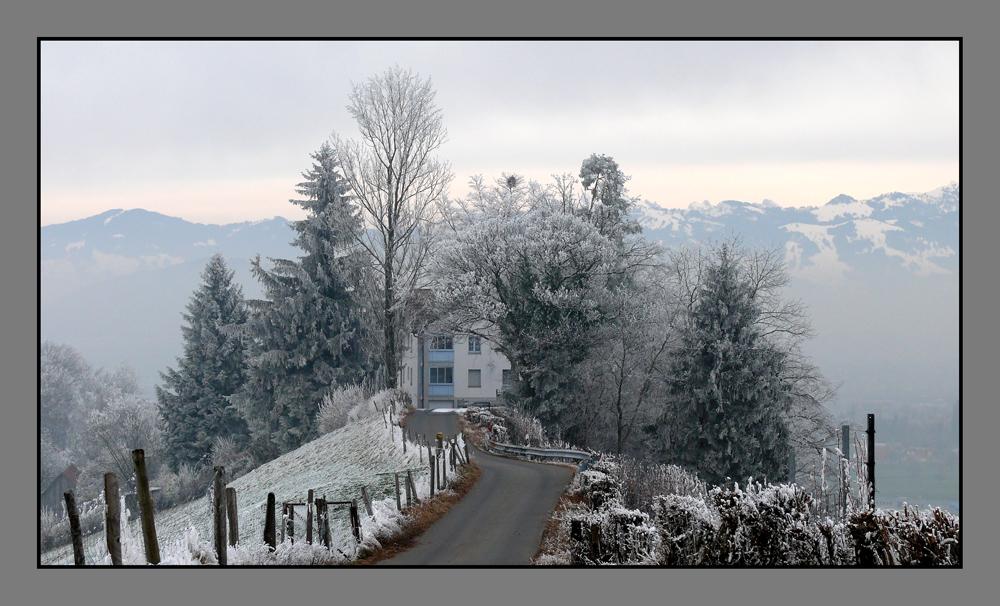 cold in switzerland 2