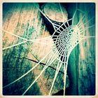 cold net