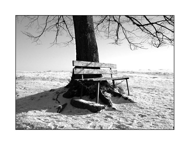 cold seat #2