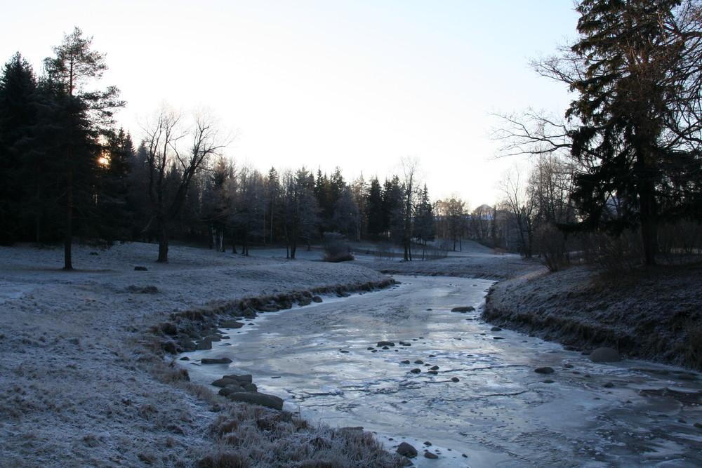 Cold winter in the Pavlovsk-Park