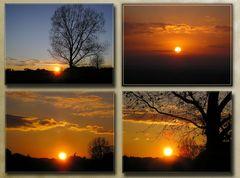 """Collage 1 """"Lichtstimmungen"""""""