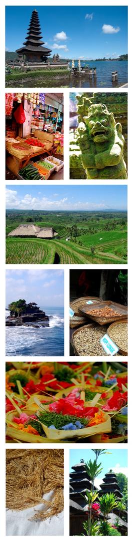 Collage Bali