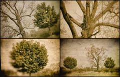 Collage der inneren Ruhe