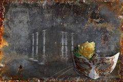 Collage Diandra