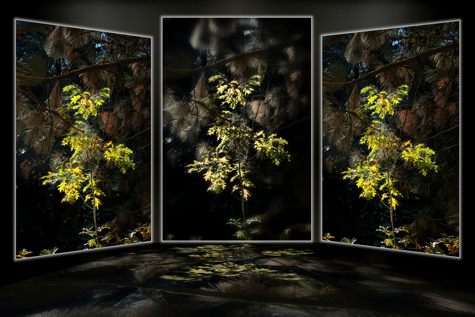 """Collage """"Ein Lichtblick im herbstlichen Welt-Wald bei Bad Grund"""