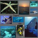 Collage eines Urlaubs
