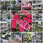 Collage GardenLife 2011